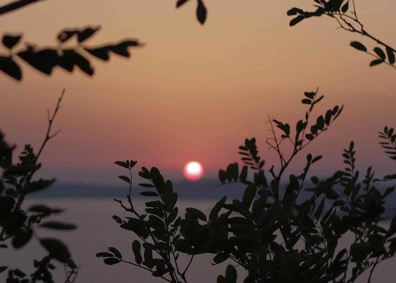 numa_w_bg_sunset_